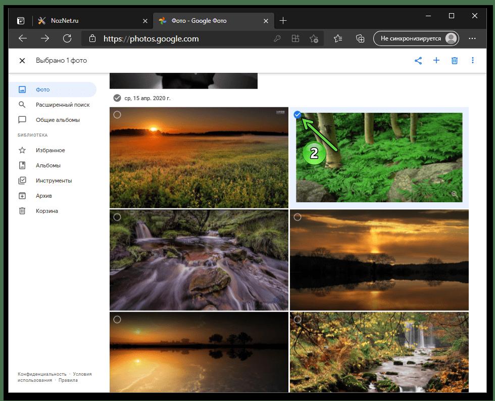 Google Фото выбор фотографии для сохранения на диске ПК в веб-версии сервиса