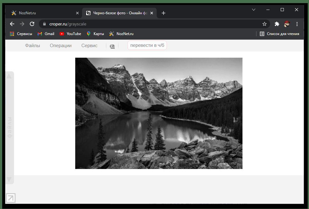 Результат превращения цветной фотографии в черно белую на сайте онлайн-сервиса Croper